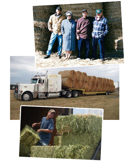Schiro's Hay and Feed